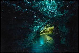 grotte nouvelle zélande