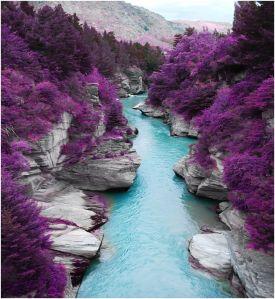 Rivière Nouvelle Zelande